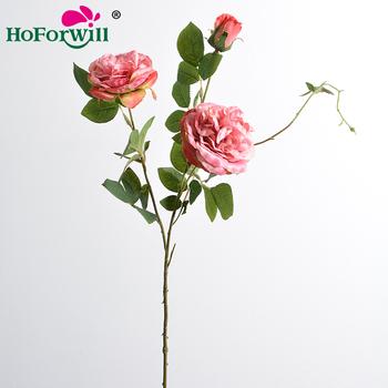 Download 620 Gambar Bunga Nyata Paling Cantik