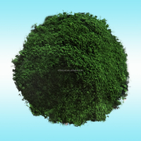 Dry paint pigments chrome oxide green for wood mulch