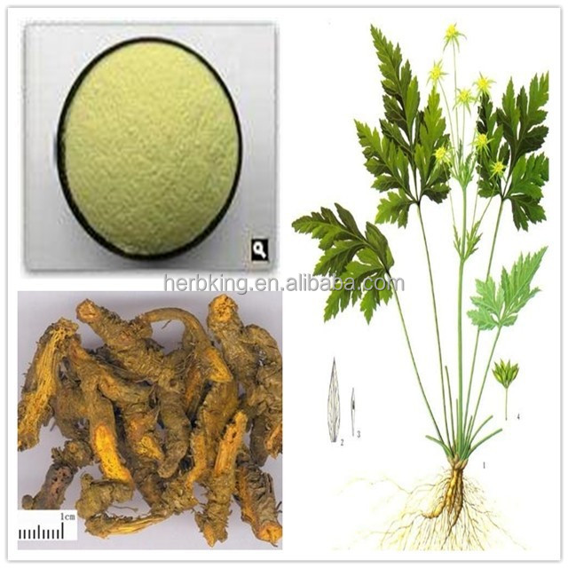 Factory Supply 100% Natural Coptis Root Extract Berberine hydrochloride CAS: 633-65-8