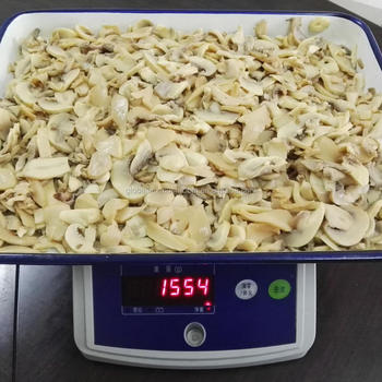 Canned Mushroom Pieces Mixed With King Oyster Mushroom