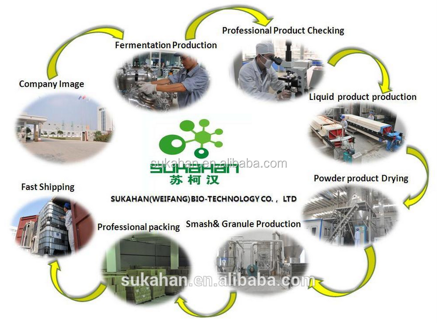 Special Household Paper Enzymes used in paper process plant