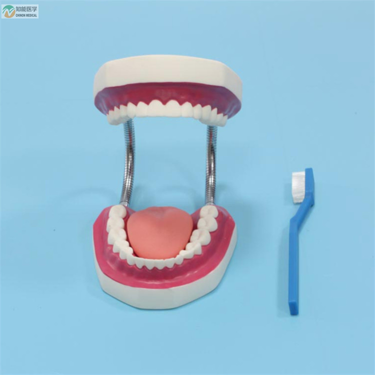 Venta al por mayor banca dental-Compre online los mejores banca ...