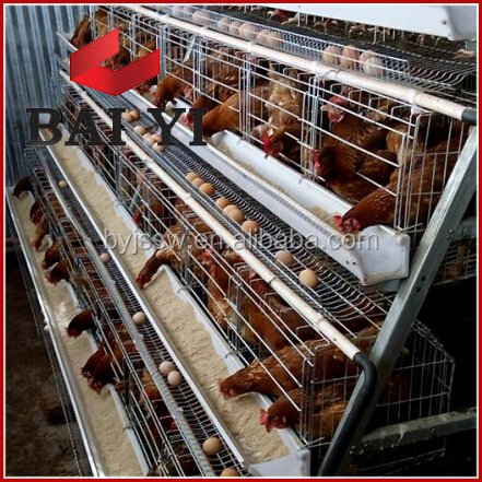chicken farms poultry,lowest price chicken wire mesh