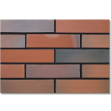 Foshan kaolin clay japanese exterior wall tile,red building bricks