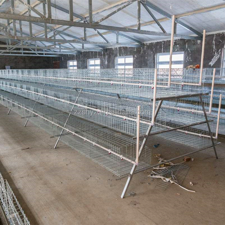 Sihai Factory 5 Tiers 200 Birds Gamefowl Dome Pen Chicken Cage For Sale -  Buy 200 Chickens Cage Product on Alibaba com