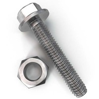 Chuanghe Stainless Steel Hex Hex Washer Head Cap Nut Flange Bolt