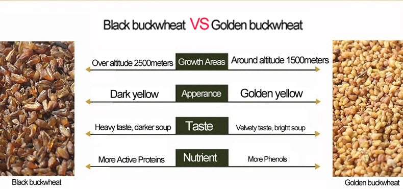 Healthy Restaurant Drinks Organic Golden Buckwheat Tartary Tea