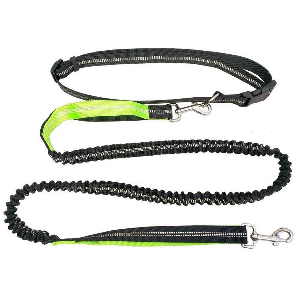 Hands Free Dog Leash Waist Free Safe Refelctive Dog Leash with Adjustable Waist Belt - for Running, Jogging or Walking Control for Up to 150 lbs Dogs, Durable Dual-Handle Bungee