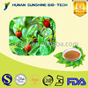 Kosher & Halal Certified Factory Supply Gardenia Extract With Gardenoiside