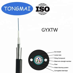 Aerial/ Duct/Direct Use 2 4 6 8 12 core Single Mode Armored Fiber Optic Cable GYXTW