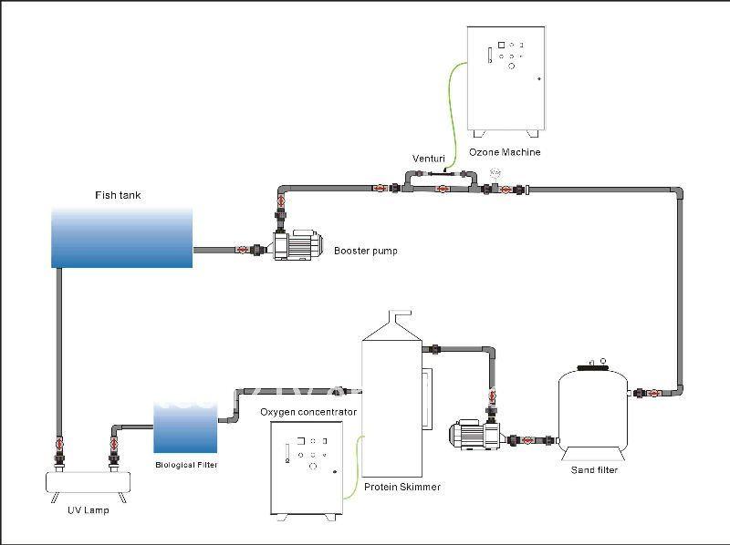 ozone generator water treatment for grouper fish farm/seagate barracuda,  shrimp farming ozone generators