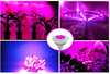 LED Plant Grow Light For Hydroponic 14w white finish led grow light ,14w growing led light for plant growth