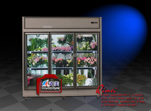 09 FE Flower display cooler