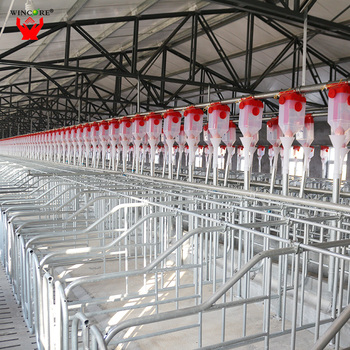 Pig Farming Equipment Factory Price Pig Farm Design Buy