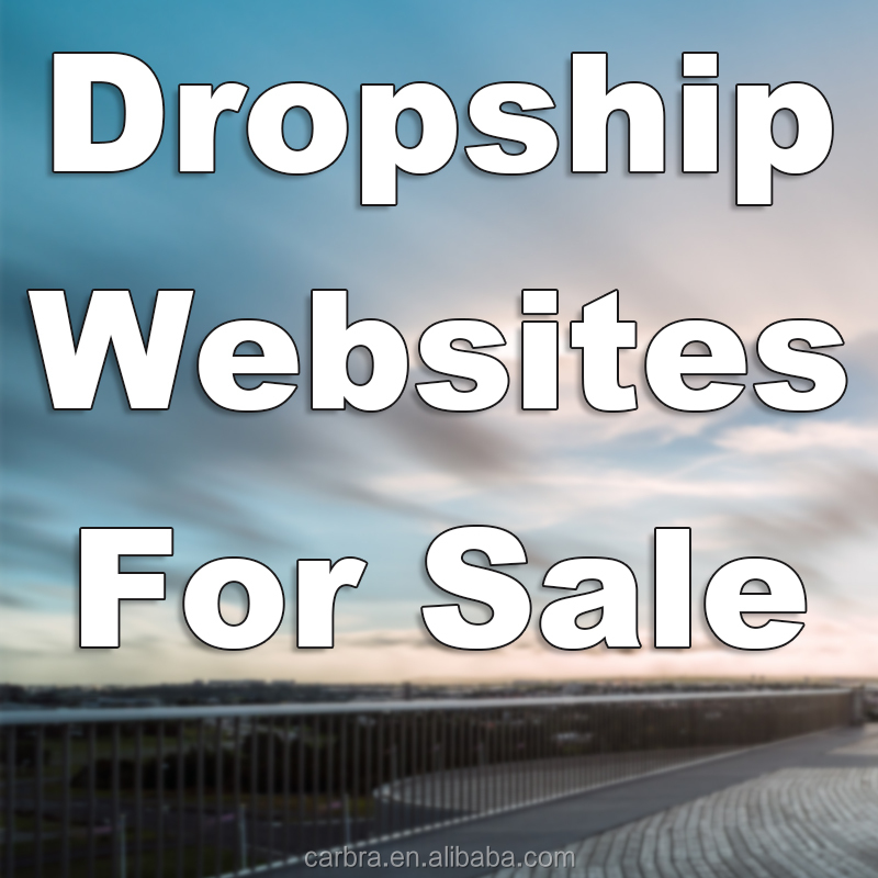 Alibaba website dropshipping website design for sale