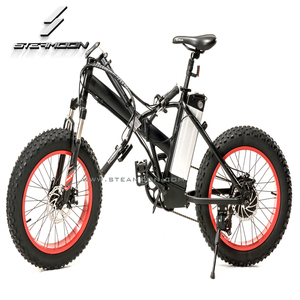 Two Wheel 250W 36V Small folding electric bicycle ebike for City commuter STM-F07