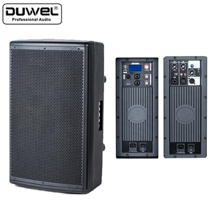 Factory Price Newest professional active subwoofer PA DSP speaker box