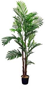 Admired by Nature GTR3635-NATURAL Artificial Areca Palm Tree Plant in Plastic Pot, Green - 6 ft.