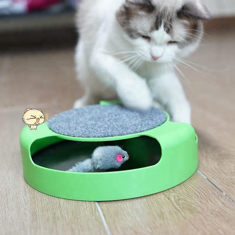 картинки игры для котов