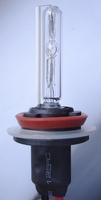 H8 HID Xenon lamp