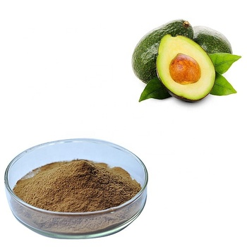High quality avocado extract powder 10 / 1