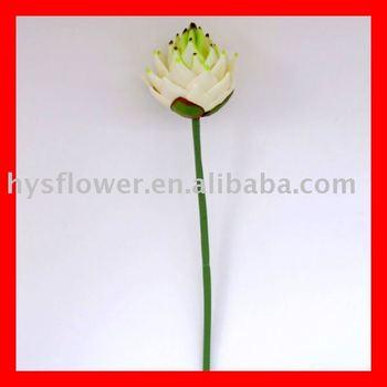 Vraie Touche Artificielle Fleur Tropicale Buy Vraie Touche Fleur