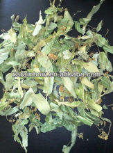 Linden flower organic hot sale