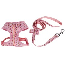RoblionPet 2018 New Wholesale Dropship Pet Products Of Cute Dog Harness Set
