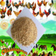 High quality Soya Bean Meal 46% for Animal Feed