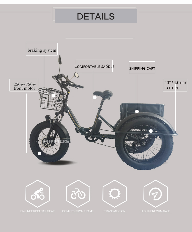 aimos 2020 3 wheel electric bicycle three wheels adult cargo electric bike with basket