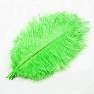 Wholesale Green Ostrich Plumes Feathers, Ostrich Plumes, Decorative Ostrich Feathers for wedding