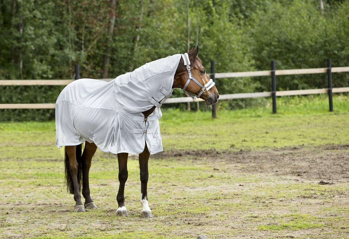 Lightweight Turnout Rugs With Neck