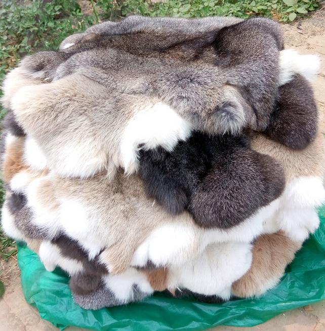 Entertainment Memorabilia Dyed Rabbit Fur Plate For Garments 100% Real Rabbit Fur Rug