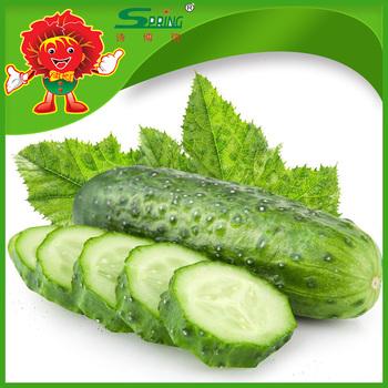 Cucumber dildo pics