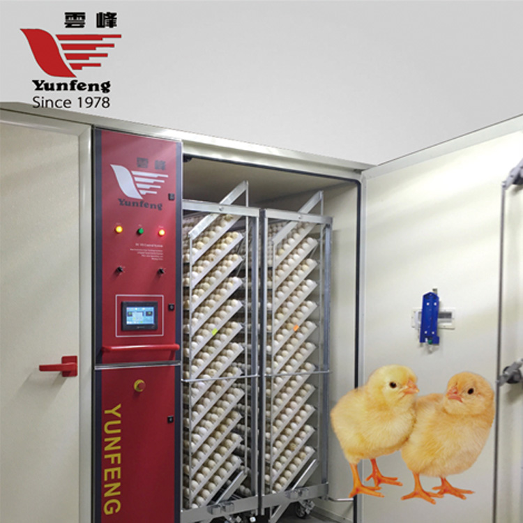 YFDF-192 ISO9001, BV 19200 eggs single-stage hatching eggs machine
