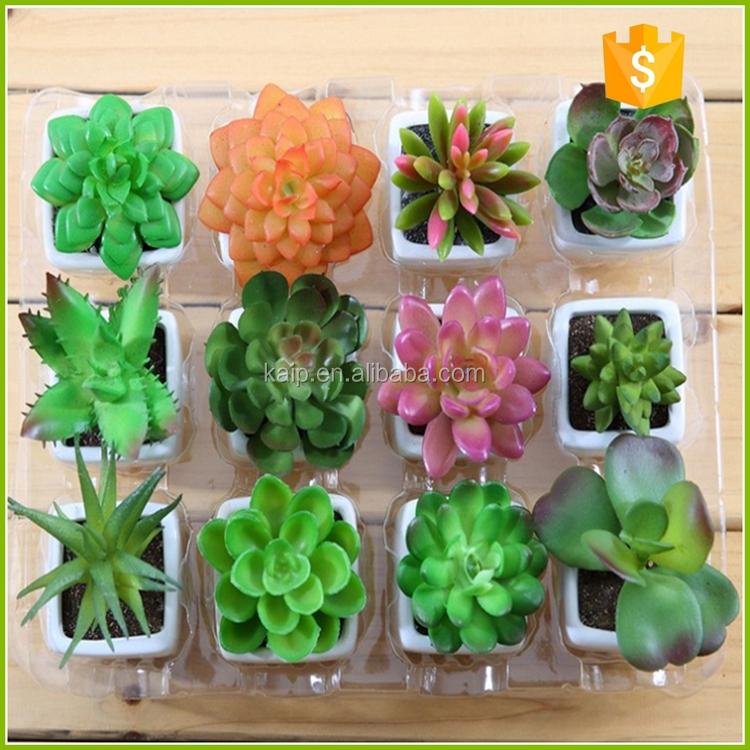 al por mayor de cactus artificial plantas plantas outdoor