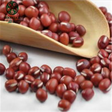 Cina Nuovo Raccolto HQ Dolce Piccolo rosso <span class=keywords><strong>Fagioli</strong></span> azuki Prezzi <span class=keywords><strong>di</strong></span> <span class=keywords><strong>Mercato</strong></span>