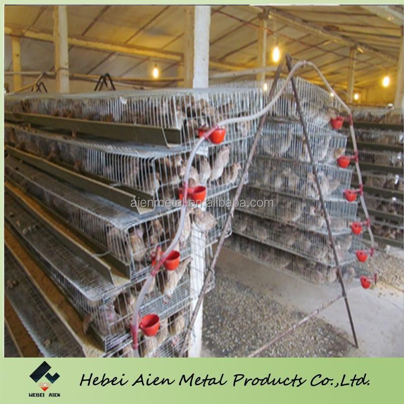 galvanis cage caille vendre cages pour animaux id de produit 60203608829. Black Bedroom Furniture Sets. Home Design Ideas