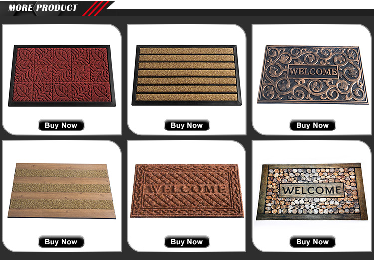 Entrance Rug Floor Mats Indoor/Outdoor Low Profile Doormat Shoe Scraper Doormat (40x60cm)