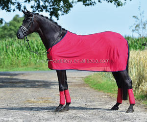 Horse protection mesh fly sheet