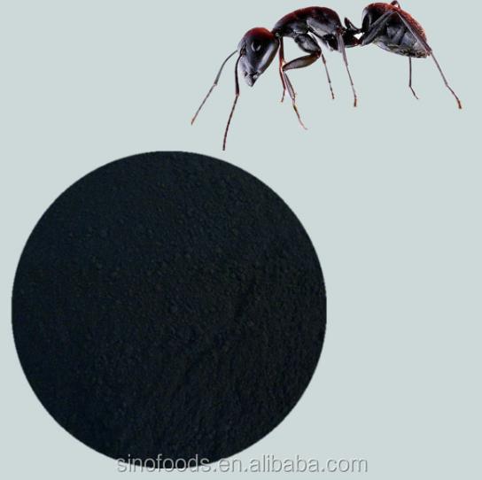 Schwarze Ameisen-Sexpillen