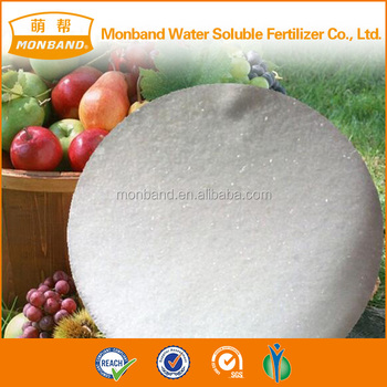Monopotassium Phosphate MKP Water Soluble Fertilizer