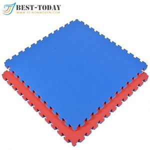 30mm Blue & Red EVA Karate Mat Interlocking EVA Gym Mats