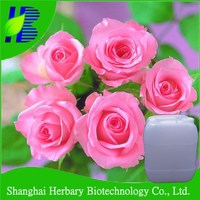 GMP manufacturer supply natural rose water