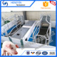 20 years manufacturer Customized pig sow farrowing pens design for sale
