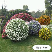 Cảnh quan dọc trang trí vườn tháp trồng sản phẩm cho hình dạng nấm