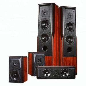 20W-100W TD--2 Floor Standing Bass Subwoofer Speaker of the House