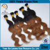 /product-detail/2014-best-qingdao-leshine-hair-factory-ombre-yaki-hair-extension-60051948208.html
