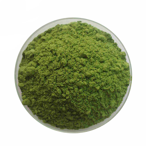 100% Natural dried Spinach Extract,organic spinach powder without any additive