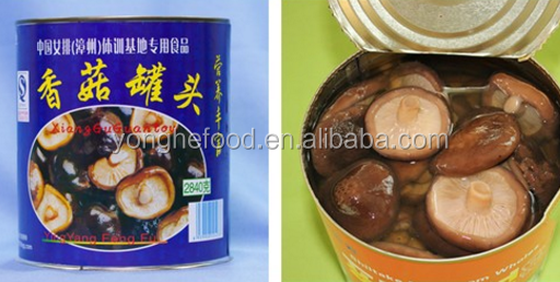 jar packed canned whole shiitake mushrooms with Haccp certificate